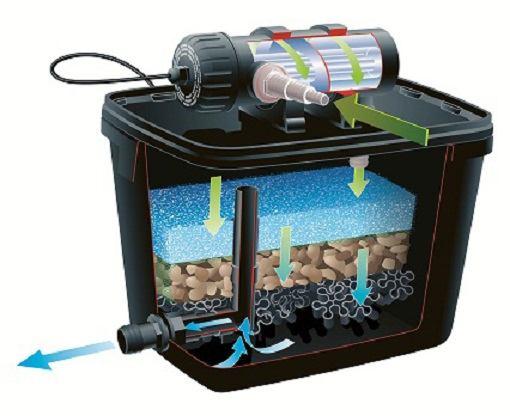 biologisch vijverfilter werking onderhoud en bacteri n